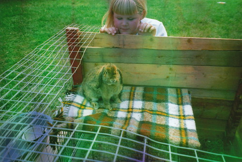 i once had a rabbit