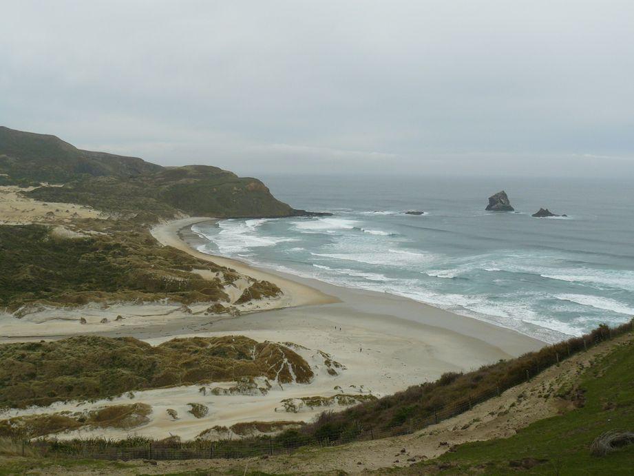 Sand Beach Nouvelle Zelande #1