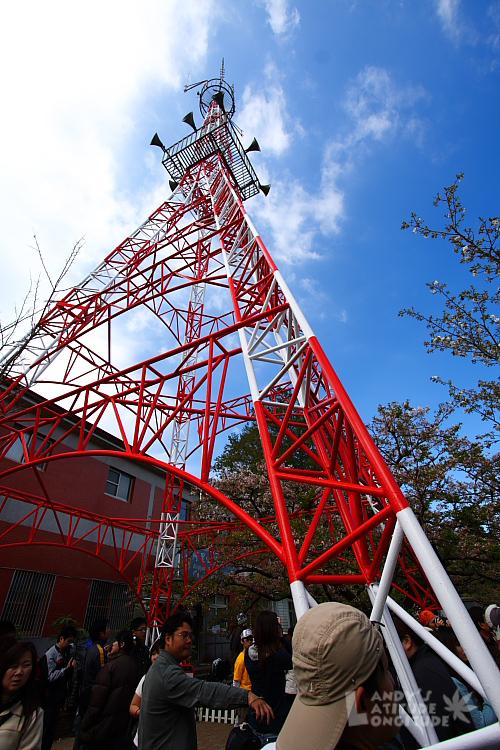 9803-阿里山櫻花_159.jpg