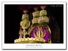 carnaval 2009, Vai-Vai