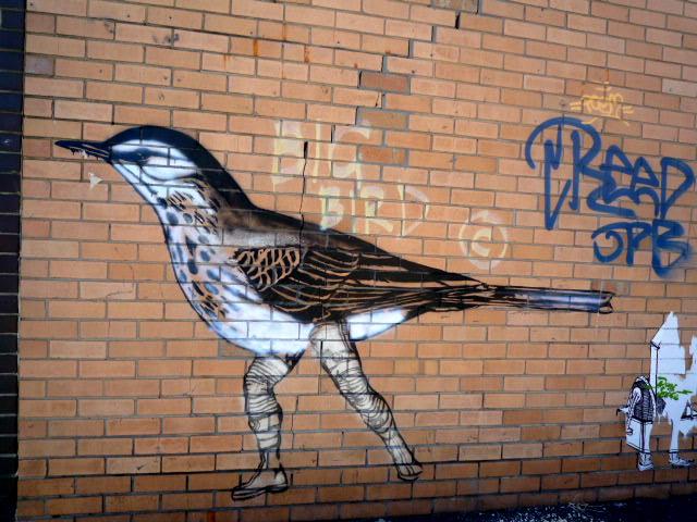 Brunswick street art