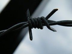 Barbed Wire Twist by zayzayem, on Flickr