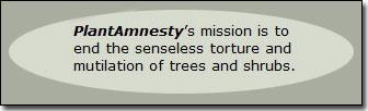 plantamnesty.org