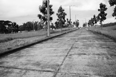 the road (rjsantos) Tags: white black monochrome nikon rj santos d90 housedog chupungco nikond90club rjsantos