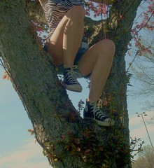 Foggy Tree (BREananicOLE) Tags: outside converse chucks chucktaylors blackchucks