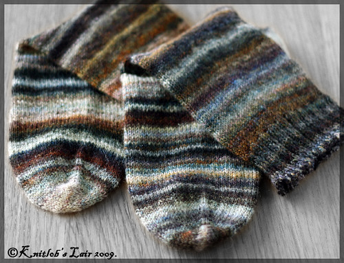 wild colors bfl socks 3
