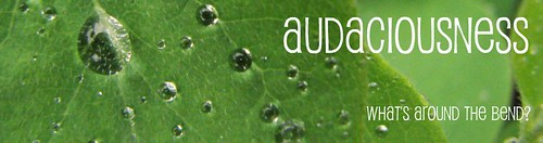 Audaciousness June Title