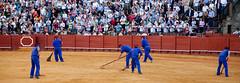IMG_3708 (matteo.B) Tags: españa sevilla andalucía spain corrida spagna plazadetoros tauromaquia espa andaluca tauromachia espaa andaluc canoneos5dmarkii