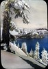 Crater Lake in winter (OSU Special Collections & Archives : Commons) Tags: blue snow tree water island craterlake wizardisland conifer pinaceae lanternslide flickrhome takeatrip osuarchives commons:event=commonground2009 dc:identifier=archives3108