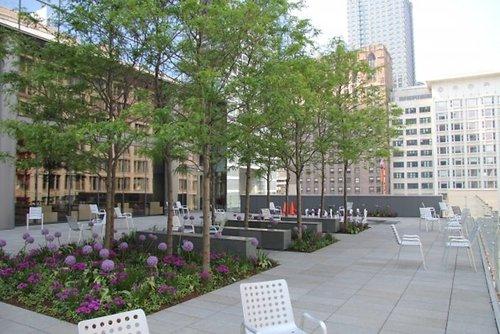 Morningstar HQ, Chicago (via glassdoor.com)