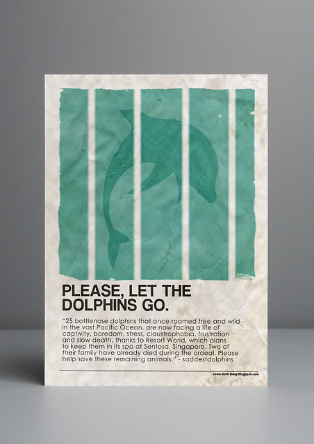 please , let the dolphins go - frame