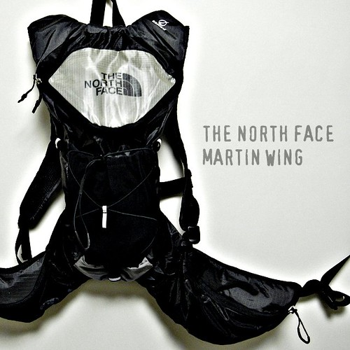 martin wing