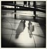 berlin futuristic noir 2 (motocchio) Tags: winter bw berlin monochrome backlight germany january reichstag shadowplay 2009 bncittà 逆光へ向かって撮れ ドイツ国会議事堂