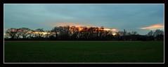 As The Sun Sets... (Geraldine Curtis) Tags: trees sunset field canon ixus 980 lightfall