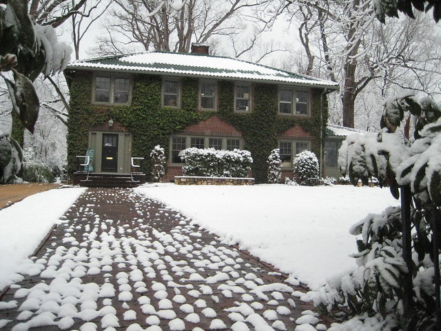 Ivy house in the snow