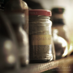 don't forget the rosemary () Tags: food andy kitchen focus dof bokeh andrea andrew shelf spices rosemary cibo spezie cucina rosmarino benedetti mensola