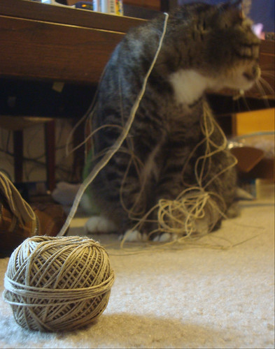Isis and Twine