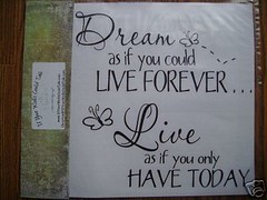 dream and Live (auctionsiterefugee) Tags: thought vinyl wallart quotes sayings homedecor homedecoration vinylwallart