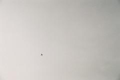 (Lisa.H.) Tags: sky london plain