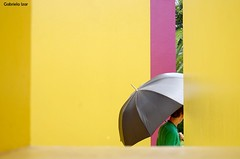 umbrella...ella...ella. (Gabriela Izar) Tags: umbrella chuva gabriela guarda izar inhotim gabrielaizar