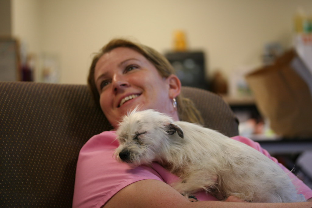 Dog Adoption Mendocino