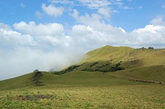 DSC_0294-1 (Mo Ki) Tags: nature hills coorg madikeri