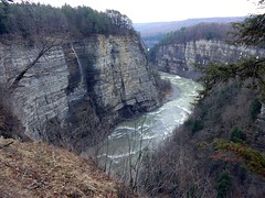 Letchworth State Park, NY (-dangler) Tags: trees cliff ny nature water river outside outdoors waterfall spring dangerous rocks bend grand canyon east adventure letchworthstatepark gorge curve genesee wny scening nyletchworthstatepark