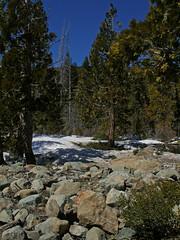 20090404 Lakes Basin Area