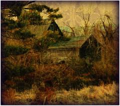 ~~ seasons change ~~ (xandram) Tags: trees texture barn photoshop grasses soe theunforgettablepictures theawardtree vosplusbellesphotos altrafotografia graphicmaster