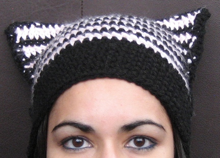 cat hat up close