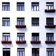 4 x 4 (.nikita) Tags: vienna windows architecture square austria planters explore nikita squarecrop built openings looshaus explored nikitashah builtworld