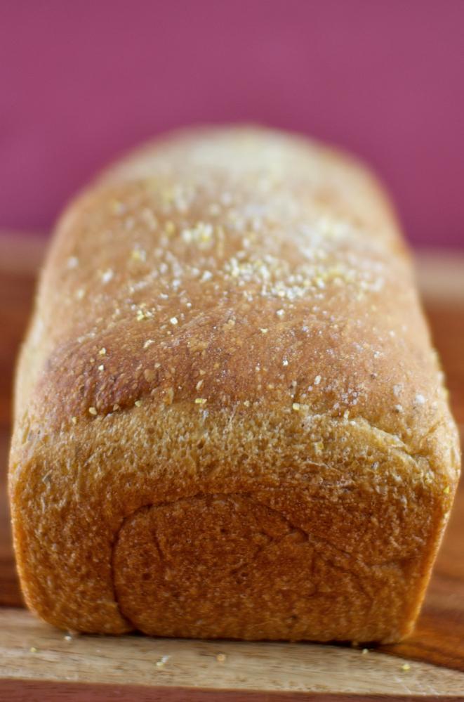 Loaf of Anadama