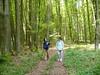 chiacchierando nel bosco