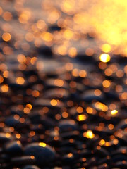 Sunset Bokeh on 15 Beer (reflectionsofthenorth) Tags: ontario nature lakesuperior northernontario naturephotography algoma ontarionature drunkphotographytryitsometime algomaontario
