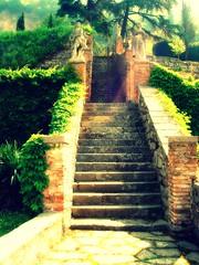 Up, Up We Go (ashley morgan.) Tags: old light italy tree brick green monument statue stone stairs greek italian gate iron italia path antique steps goddess ivy gateway cherub angelic vicenza palladio wrought