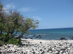 Beach near Mauna Lani