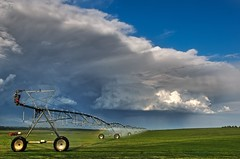 Sod Farm & Thunder Cells (david.evenson) Tags: storm clouds colorado farm longmont cell thunder