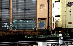 The Gray Bird Rolling By Again... (mightyquinninwky) Tags: railroad logo crossing character tracks indiana railway move southernindiana railcar rails weathered spraypaint ladder mh freight rolling gravel railroadcrossing inmotion carcarrier freights trainart autorack holyroller rollingstock paintedtrain railart spraypaintart paintpen cnw ohiorivervalley space63 chicagonorthwesternrailway paintedsteel electicalbox evansvilleindiana cartoonbird vanderburghcountyindiana oldhendersonroad nurrenbernroad railroadtrafficlight markallpen paintedrailcar thiscarexceedsheight 11223344556677 carfireonflickr charactersformyspacestation