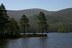 Loch an Eilean 2 (StickyToffeeQueen) Tags: aviemore cairngorms lochaneilean scottishloch