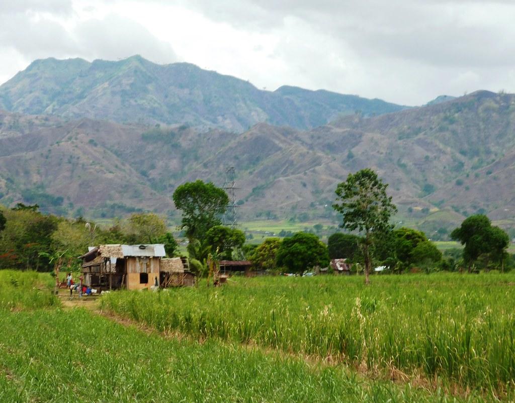 Negros-Dumaguete-Mabinay-Bacolod (109)