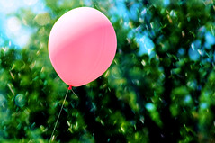 Hey Mr. no more 42, this pinks for you.. (Cherishlovespink) Tags: birthday pink texture you bokeh balloon thank crap happybirthday but 43 bahaha pinkalicious cherishlovespink noonehastoknow pinkaloon okeditingtitlenow