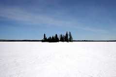 Island (victoria.anne) Tags: trees snow canada island bluesky manitoba nearandfar jessicalake walkingontheiceouttotheisland oncewemadeittotheislandwewereallveryhotfromwalkingthroughthedeepsnowinsomanylayersplusitwassoniceoutthatday alliwantedtodowasstayanddrinkbeer toobadwedidnthaveanybeer canadaatitsbest