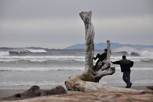Father & son watch surfers in Tofino