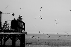 \\    , (  ) Tags: pier brighton khalid