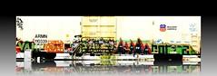 Long Reflection (mightyquinninwky) Tags: railroad drunk train geotagged graffiti indiana rail railway southernindiana unionpacific boxcar graphiti industrialpark lure trainyard pranksters paintedtrain stor norca wgf buildingamerica frnk hoodedeyes evansvilleindiana duhn paintedboxcar geo:lat=37963824 unionpacificboxcar stnr vanderburghcountyindiana geo:lon=87608934 paintingamerica taggingamerica punk5