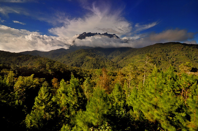 Forest surrounds the soaring Mt Kinabalu peak