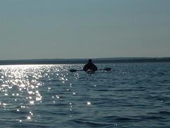 Lake Michigan - Benzie County (onewildwest) Tags: kayak michigan paddle canoe lakemichigan kayaking paddling benzie benziecounty onewildwest benzietucky