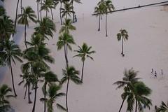 Waikiki Beach (sharra2) Tags: beach hawaii waikikibeach hiltonhawaiianvillage