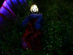 Midsummer Night's Dream (jannepaint) Tags: longexposure flowers lightpainting celebrity marilyn night forest movie star stencil marilynmonroe hollywood lightsabre lightdrawing lapp lightstencil