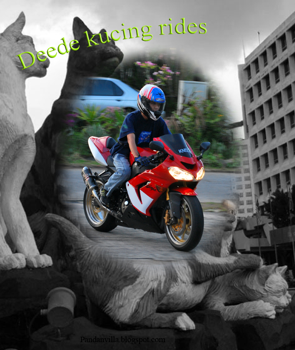 deedee kucing ride